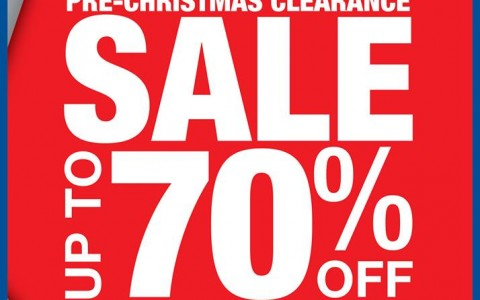 Shopwise Pre-Christmas Clearance Sale November - December 2013