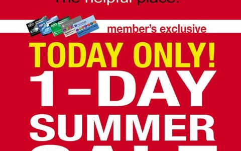 Ace Hardware 1-day Summer Sale for SMAC members April 2014